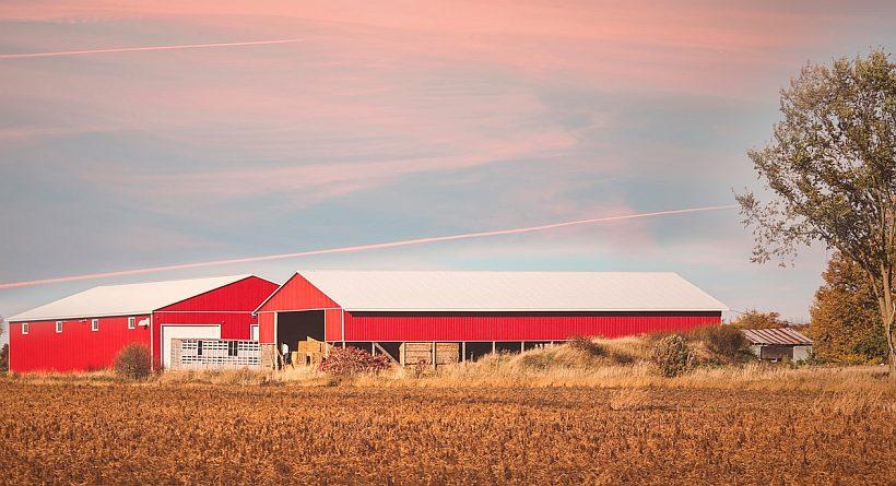 Hale namiotowe dla rolnictwa Zielona Góra lubuskie - produkcja i wynajem